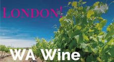 London! Western Australian Premium Wine Tasting Trade-Only